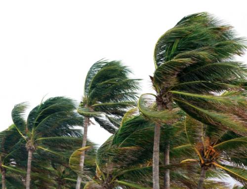 Hurricane Season Preparation for Rentals